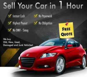 sell car for cash in Auckland